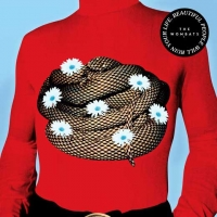 The Wombats - Beautiful People Will Ruin Your Life